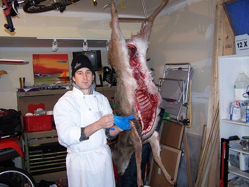 venison butchery